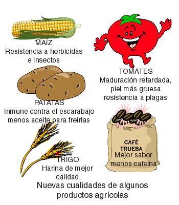 Cortesía www.arrakis.es
