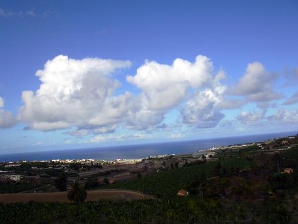 Plataneros de Las Palmas de Gran Canaria
