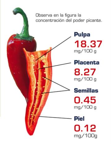 Dónde pican los chiles (Cortesía: unamiradaalaciencia.unam.mx)