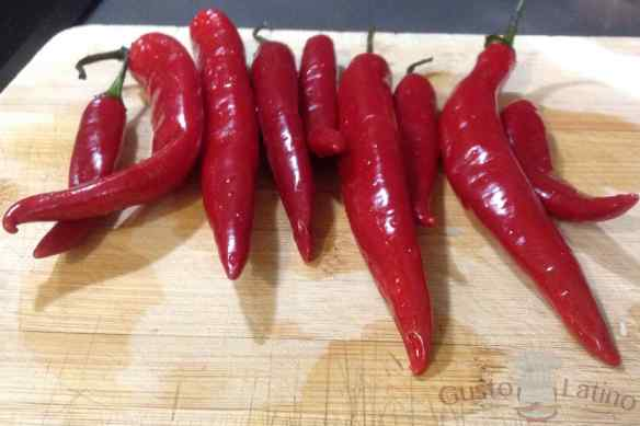 Salsa casera chiles